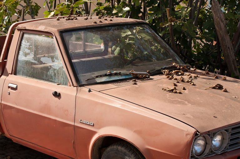 What Is A Beater Car? (All You Should Know)